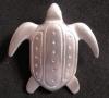 arawakturtle